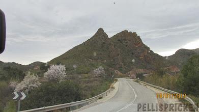 Photo: En talande bild hur här ser ut, mandelträd utmed vägen och höga bergstoppar runt omkring oss