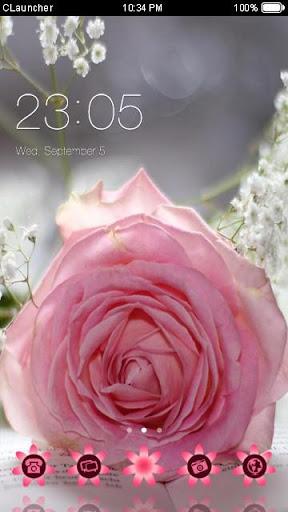 Pretty Pink Rose Theme
