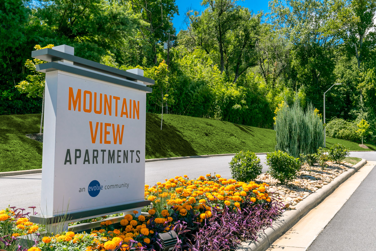 Mountain View Apartments Asheville Nc