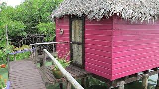 Anchor Drop in Bocas del Toro