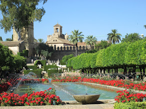 Photo: This is a good display of the beautiful gardens and ponds at Alcázar.