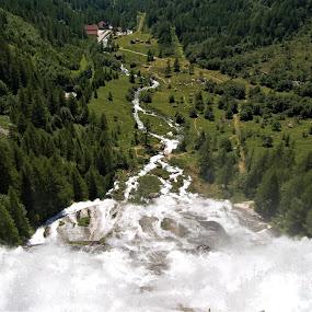 Cascata del Toce by Sara Verdini - Landscapes Waterscapes ( mountain, cascata del toce, wood, water )