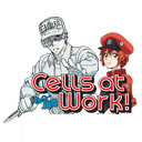 Cells At Work Wallpapers Custom Anime New Tab