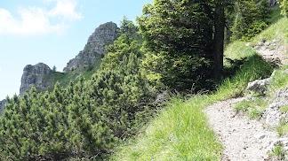 Rückblick Zirlesegg Gaishorn und Rauhhorn Allgäu Tirol