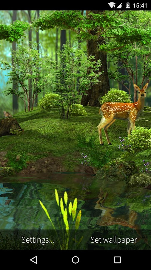 3D Deer Nature Live Wallpaper  screenshot3D Deer Nature Live Wallpaper   Android Apps on Google Play. Forest Hd Live Wallpaper Free Apk. Home Design Ideas