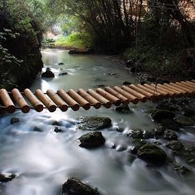 The river bridge by Cornelis Cornelissen - Nature Up Close Water ( water, creek, bridge, woodenbridge, river,  )
