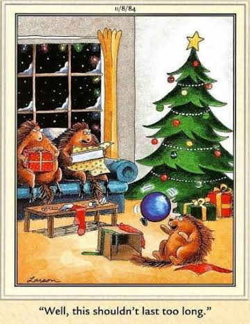 a far side christmas