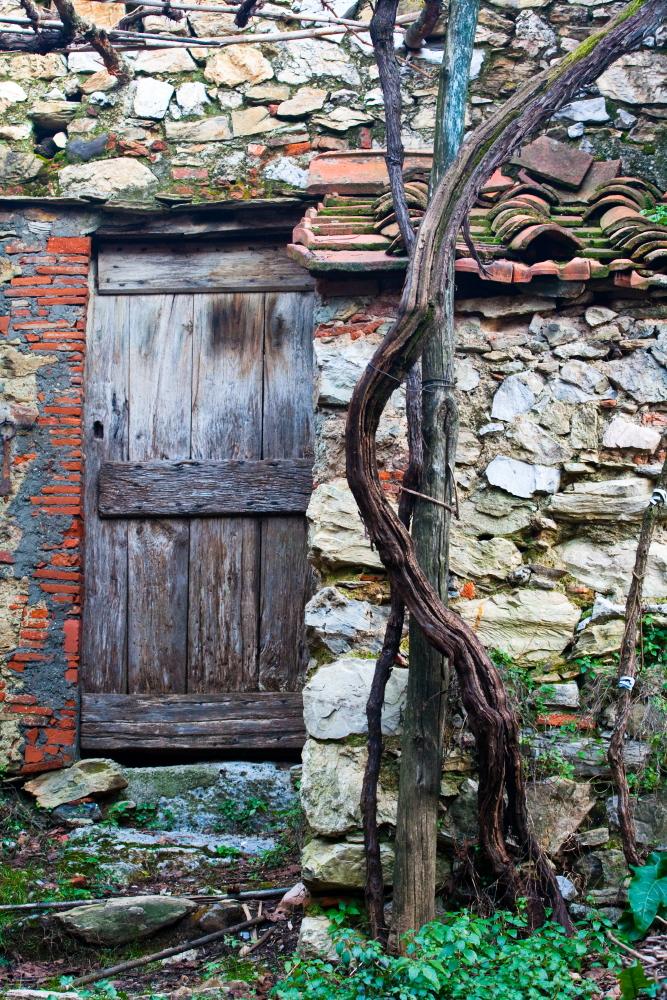 La porta dei passi perduti di tolmino