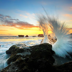 Wings Splash by Agoes Antara - Landscapes Waterscapes