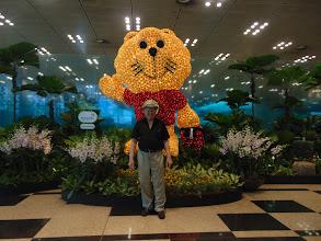 Photo: CHANGI AIRPORT