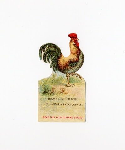 Figure:Brown Leghorn Cock