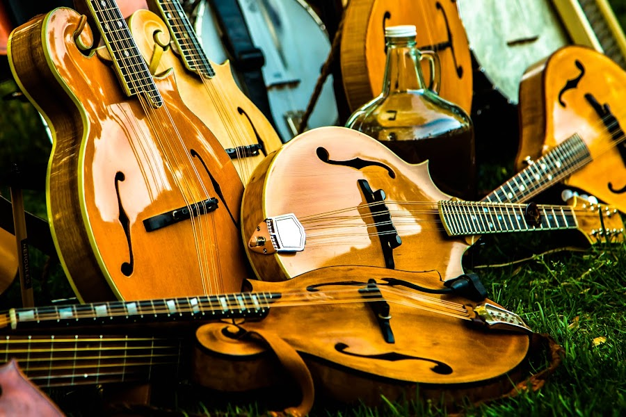 Mandolin Madness by Jason Rose - Artistic Objects Musical Instruments ( tremelo, mandolins, mandolin, strings, bluegrass, instruments )
