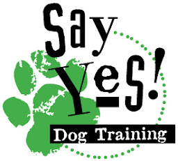 say-yes-logo