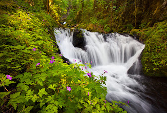 Photo: Another one from this past spring. This was actually shot at about 3 in the afternoon on a sunny day. I went out just because I felt like wandering around the gorge not really expecting to get any great shots with the bright light, but I think this one worked out pretty well.  #WaterfallWednesday, #Photography, #Oregon
