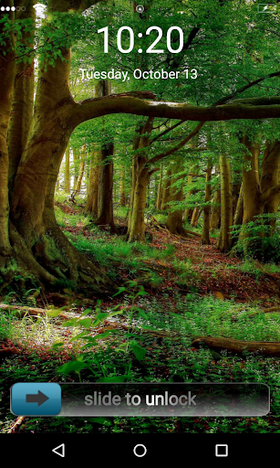 Natural Forest 3D Locker Theme