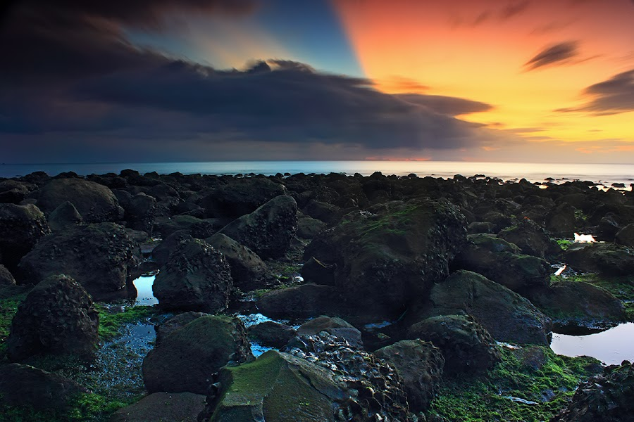The Reef by I Kadek Dwi  - Landscapes Waterscapes
