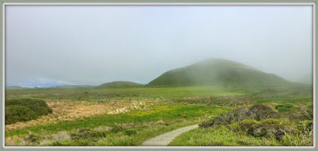 Photo: Path in Abbott's Lagoon, with afternoon fog