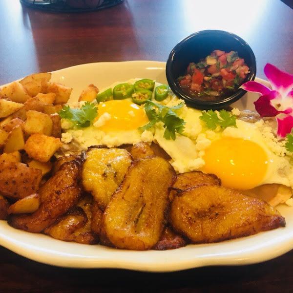 Motuleño plate completely gluten free
