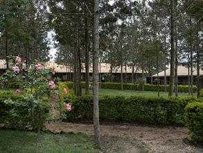 Photo: Garden of the secondary school