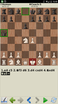 Сhess - tactics and strategy screenshot