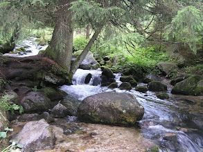 Photo: D9020142 spacer Dolina Olczyska