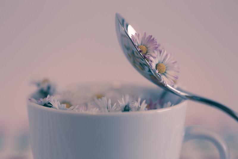 Soft awakening di Tindara