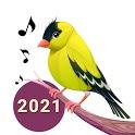 Bird Calls, Sounds & Ringtones icon