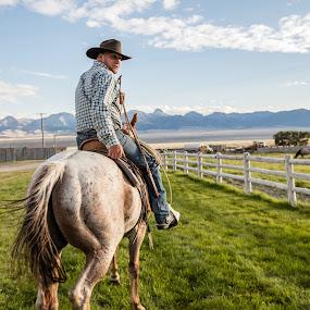 Real Cowboy by Mark Richardson - People Professional People ( farm, idaho, ranch, cowboy, horse )