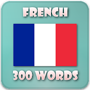 French verb conjugation offline