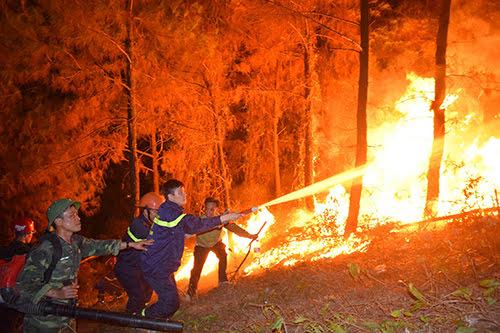 Các lực lượng tham gia chữa cháy rừng