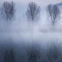 I tre e la nebbia di