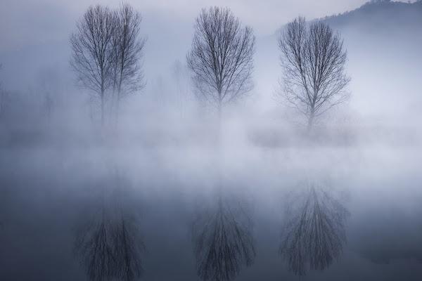 I tre e la nebbia di fedeisak