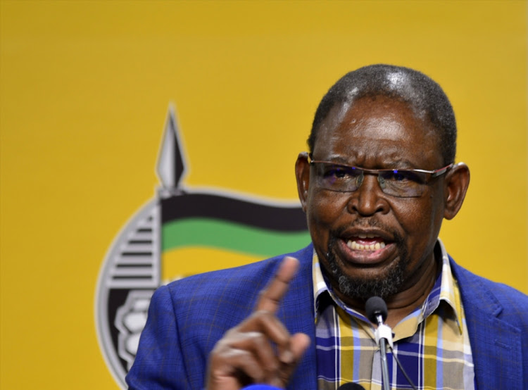 "ANC economic transformation chairperson Enoch Godongwana has reassured that any expropriated land under the ANC would go directly to the people' ""not via the government"" as the EFF proposed."