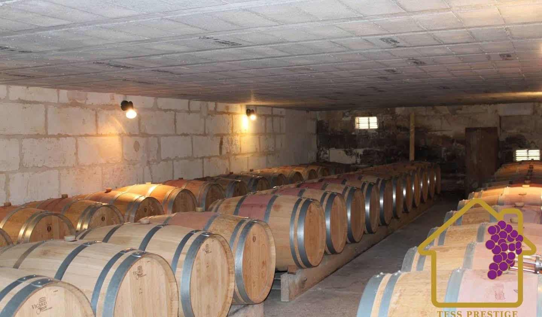 Château Fronsac