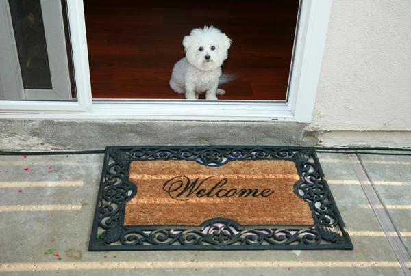 D:\БИЗНЕС\ДИМА\Картинки для подготовки дома для собаки\welcome dog-at-home.jpg