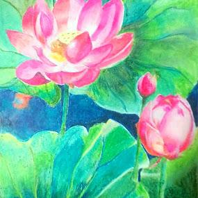 Lotus-the beauty of nature by Satyabrata Paul - Drawing All Drawing