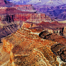 Grand Canyon by Stanley P. - Landscapes Caves & Formations