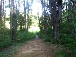Photo: Path to Midget Field.