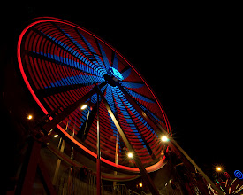 Photo: Night Flora San Jose, CA. 2011.  #sjphoto2011 #sj2011