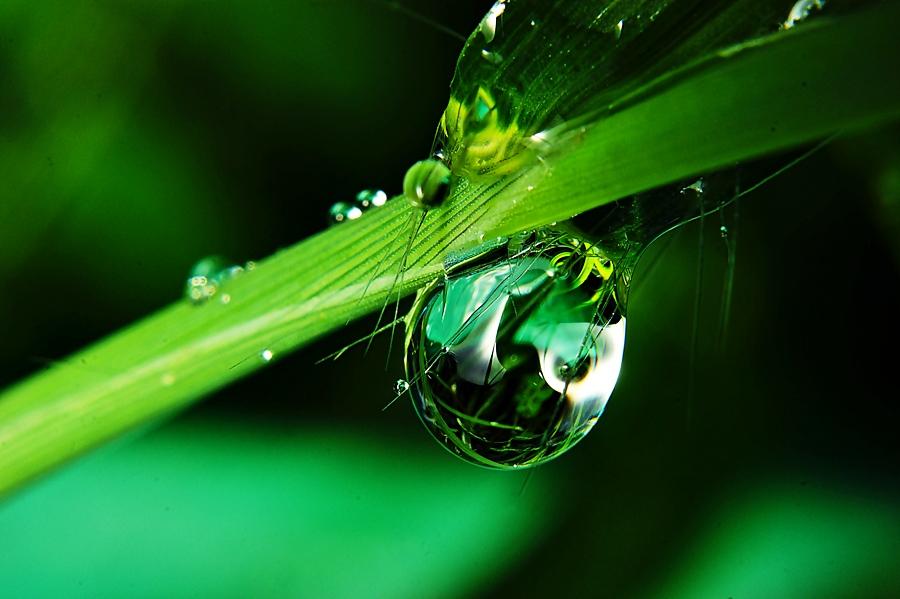 clrar one by Sengkiu Pasaribu - Abstract Water Drops & Splashes
