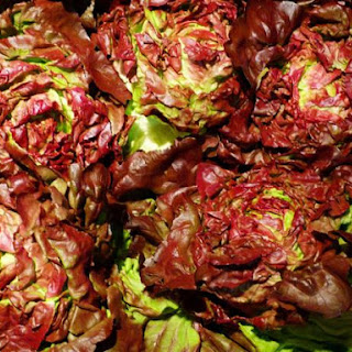 Grape Lettuce Salad Recipes