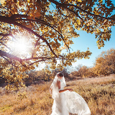 Wedding photographer Viktoriya Dovbush (VICHKA). Photo of 26.12.2014