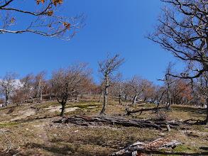 檜塚奥峰へ登る