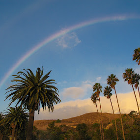 Rainbow over Refugio by Christine Lester-Deats - Landscapes Weather