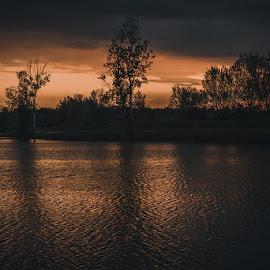 Cinematic sunset by Vanja Vidaković - Landscapes Sunsets & Sunrises ( croatia, sunset, vukovar, staravuka )