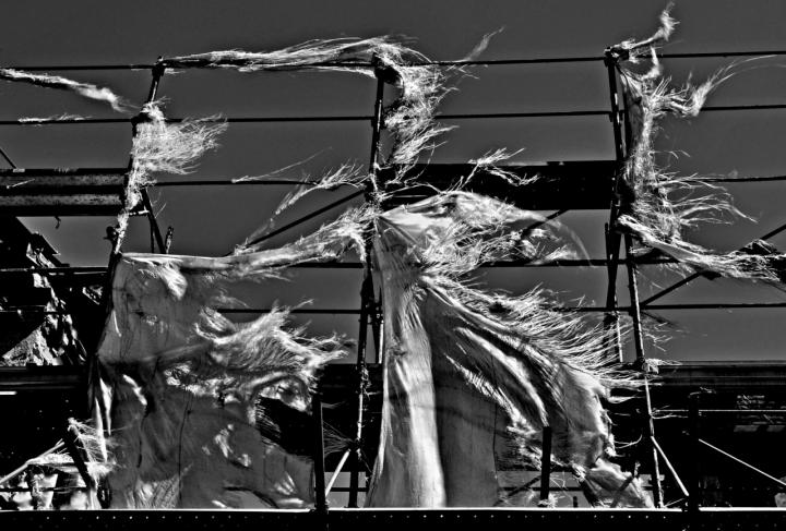 Il vento... di AlfredoNegroni