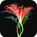 3D Flower Wallpaper APK