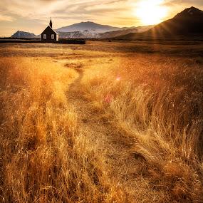Follow us by Kaspars Dzenis - Landscapes Prairies, Meadows & Fields ( glacier, field, mountains, iceland, church, sunset, snæfellsnes, path, landscape )
