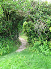 Photo: Garden path in Salthouse on the North Sea.