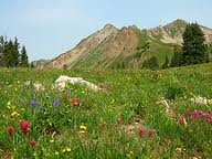 Photo: RVR Hiking Group - Capitol Peak Meadow